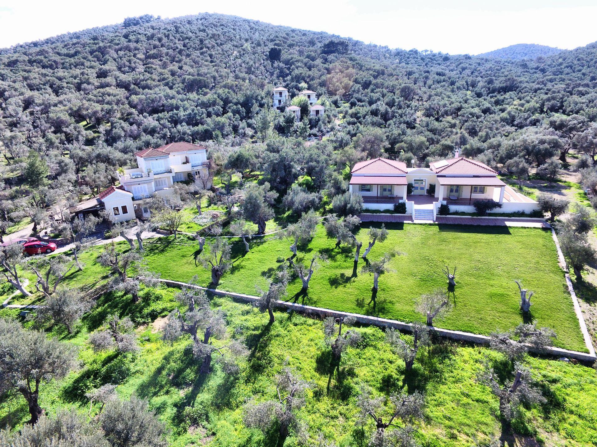 Gera's Olive Grove (Elaionas Tis Geras) - Μυτιλήνη ✦ 2 Ημέρες (1 Διανυκτέρευση) ✦ 2 άτομα + 1 παιδί έως 2 ετών ✦ Χωρίς Πρωινό ✦ 01/09/2021 έως 30/09/2021 ✦ Υπέροχη Τοποθεσία!