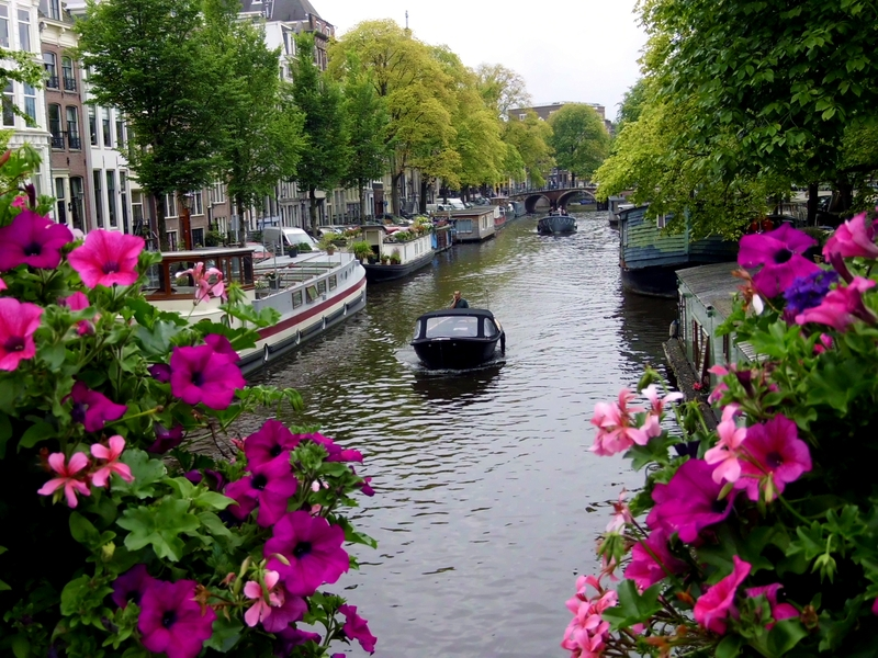5 Ημέρες Εορτές - Άμστερνταμ εικόνα