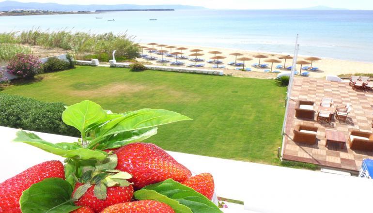 152€ από 280€ ( Έκπτωση 46%) ΚΑΙ για τις 3 ημέρες / 2 διανυκτερεύσεις KAI για τα 2 Άτομα, στο Amaryllis Paros Beach Hotel επάνω στο κύμα, σε δίκλινο δωμάτιο με Θέα Θάλασσα και Πρωινό στην Χρυσή Ακτή της Πάρου! Για όσους πραγματοποιήσουν 4 διανυκτερεύσεις δίδεται μία επιπλέον διανυκτέρευση Δωρεάν με Πρωινό για να απολαύσετε 6 ημέρες στα καταγάλανα νερά του Αιγαίου! Υπάρχει δυνατότητα επιπλέον διανυκτέρευσης! εικόνα